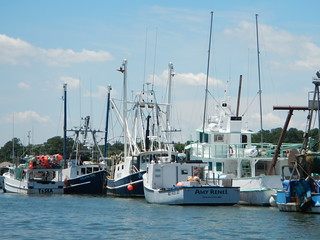 About Coastal Fisheries