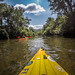 French Broad River - Rosman to Island Ford-22