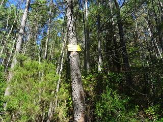 Panneaux de la fin de la piste de Fugulina sur le PR5