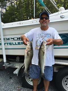 Photo of man holding striped bass he caught in the lower Choptank.