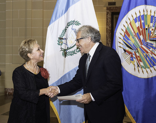 New Ambassador of Guatemala to the OAS presents credentials