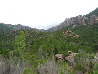 Sur le chemin d'exploitation au retour : la vallée Cervi/Peralzone