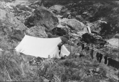 Mountain campsite, showing John Robert (Jack) Murrell sticking his head out of a tent, with socks drying on guy rope, Tutoko Valley, [near Age Glacier], Southland Region