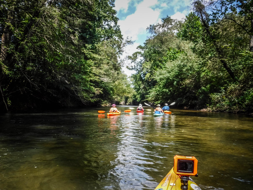 Paddling the French Broad River with WNC Kayaking