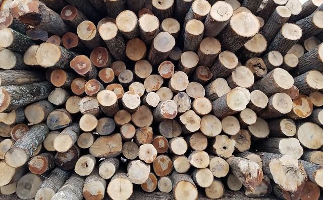 Piles of lumber