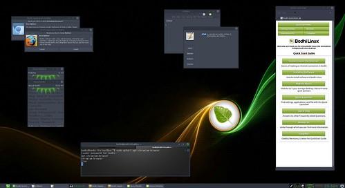 BodhiLinux50