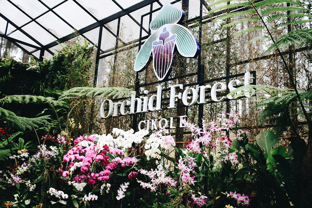 Travel Catalogue : Orchid Forest Cikole