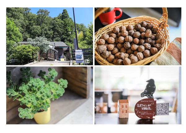 黒猫とほうき@Tane Cafe(愛知県瀬戸市のカフェ)の外観とインテリア