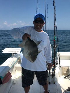 Photo of man holding triggerfish