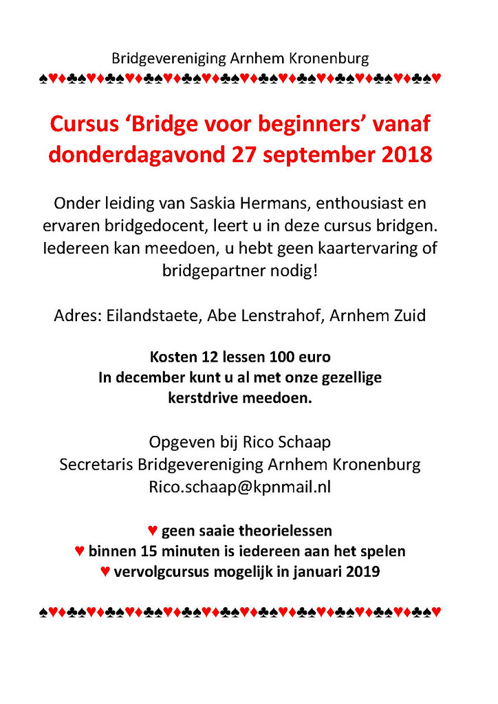 bridge cursus