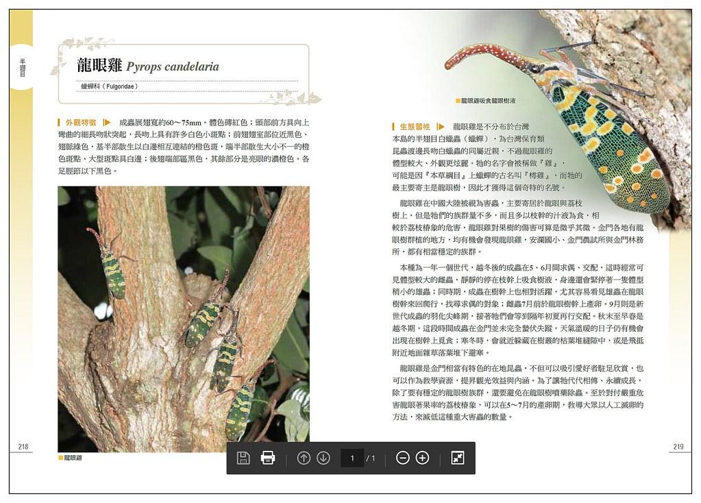 2011年以前,我對龍眼雞的生態了解較少,自己大部分所知都寫入【金色島嶼的六足精靈】中,後來從事烈嶼昆蟲生態觀察拍攝兩年後,對龍眼雞的了解才又增加很多。