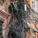 Kathmandu electrical wiring