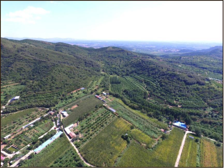 蓋婭沃思花園全景照片,有作物區、果園、雞舍、香草園等等。提供:張赫赫(不適用CC共創授權)