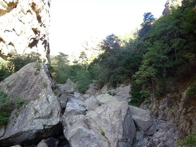 Arrivée à la brèche : le ruisseau vers l'amont