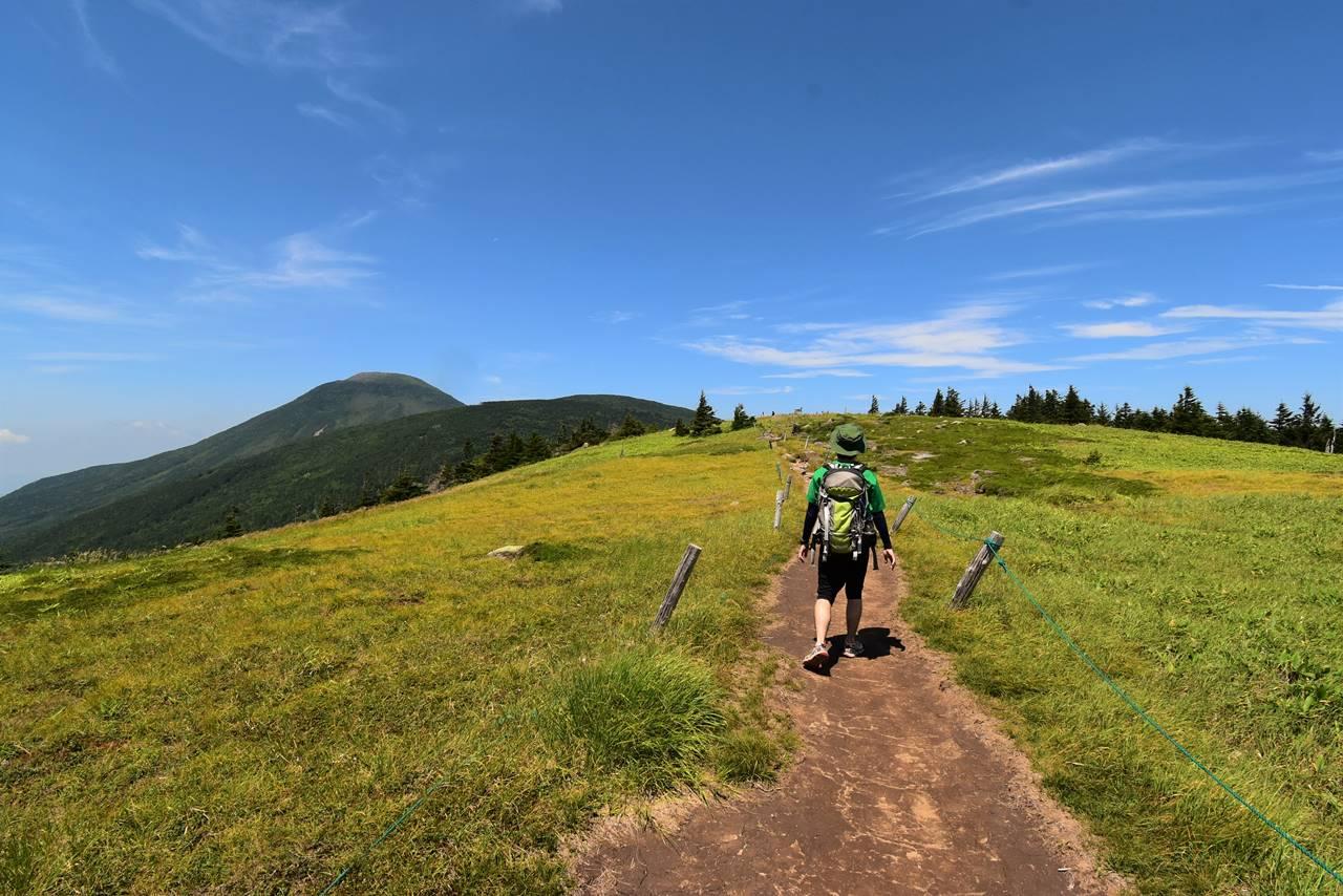 北八ヶ岳・双子山ハイキング