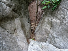 En haut de l'échelle de corde