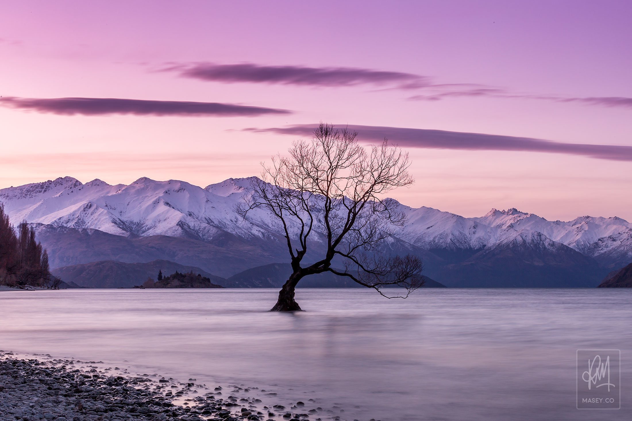 The Wanaka Tree - Wanaka, New Zealand
