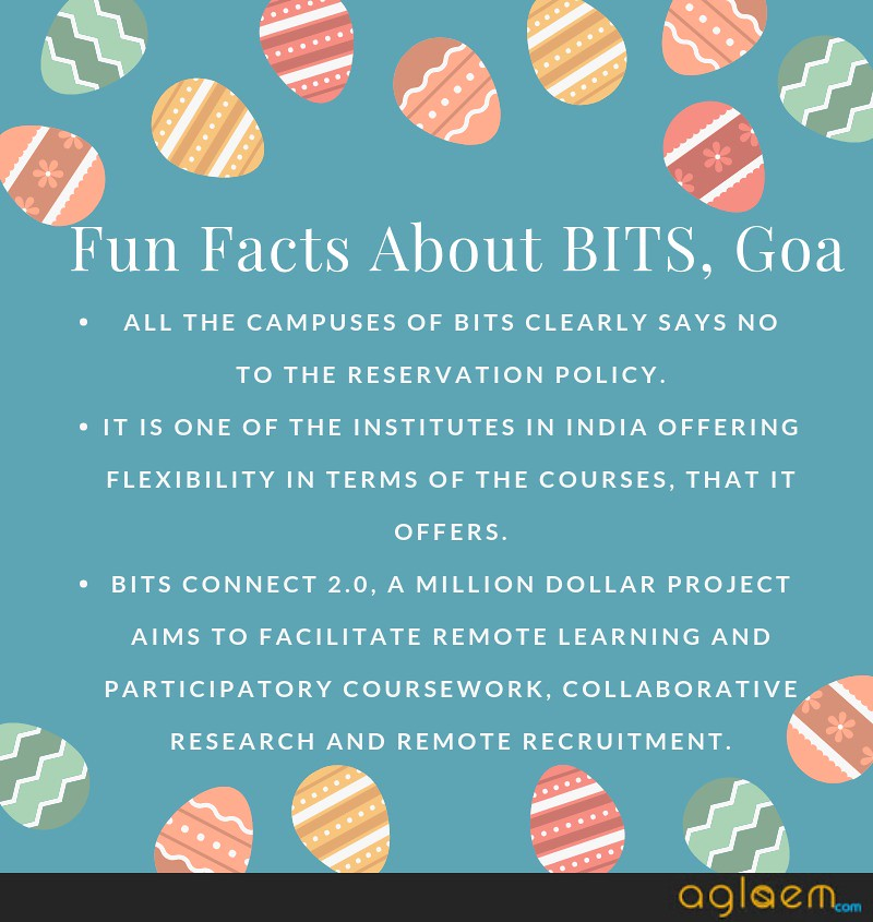 bits facts