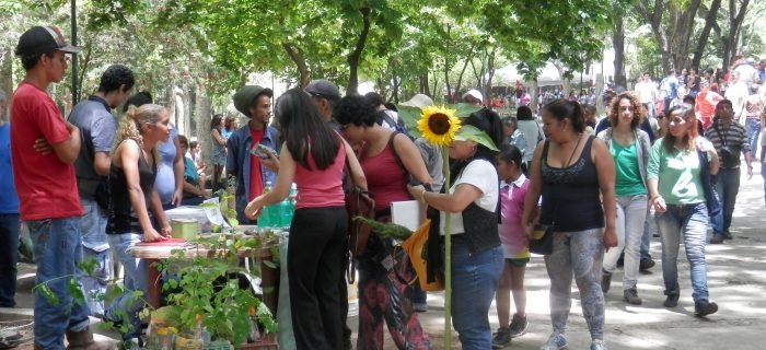 委内瑞拉的农夫市集。
