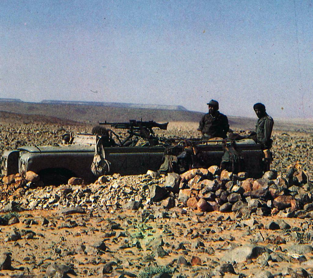 Le conflit armé du sahara marocain - Page 11 43446973734_6a383d3bfb_o