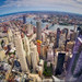 City of New York from One World Trade Center