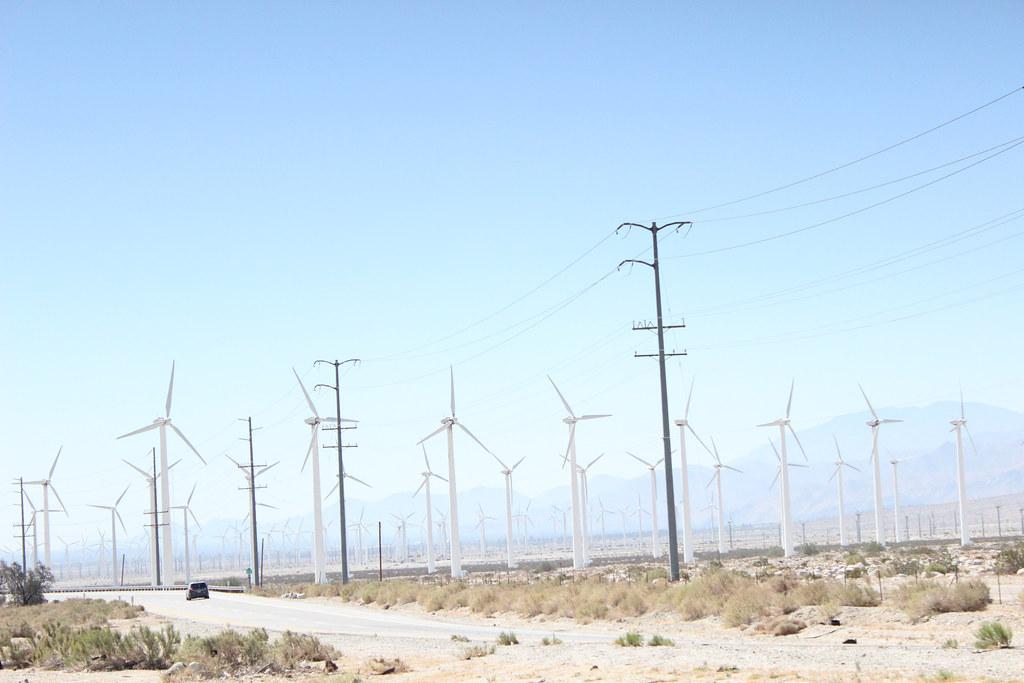 美國加州高速公路旁的風機。Laura Lee Dooley(CC BY 2.0)