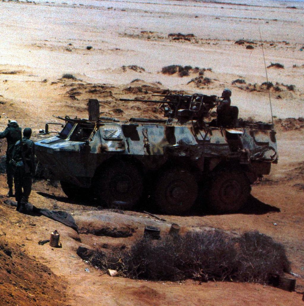 Le conflit armé du sahara marocain - Page 11 43446973164_670f21a288_o