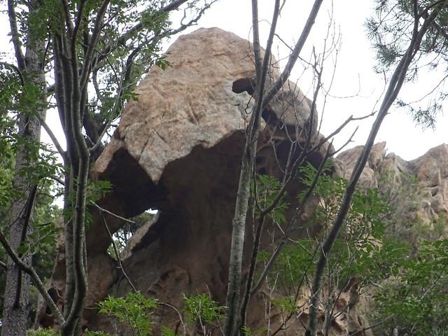 Une roche tafonisée en amont de la brèche