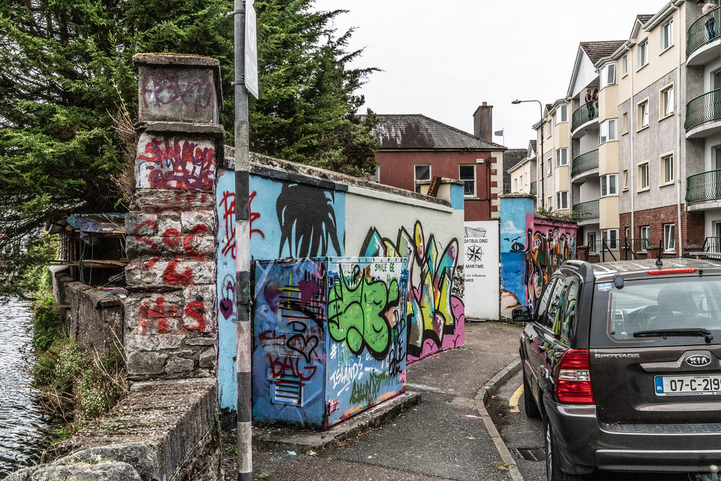 STREET ART AT CROSSE'S GREEN IN CORK 001
