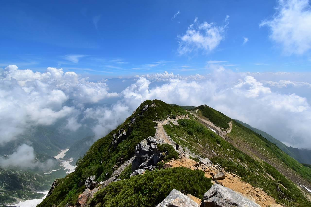 八方尾根 雲の上の登山道