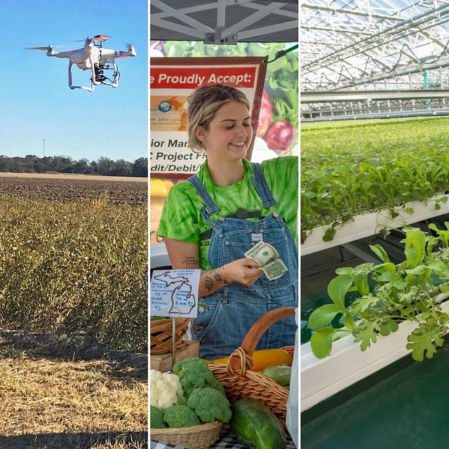 A photo collage of an UAV, a farmer's market and hydroponic system