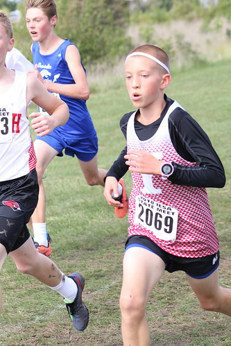 Max Rowe Runs for Yorkville at the IESA State Cross Country Championships