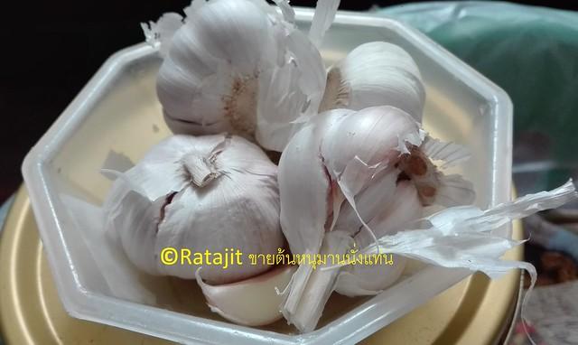 กระเทียม หรือ Garlic