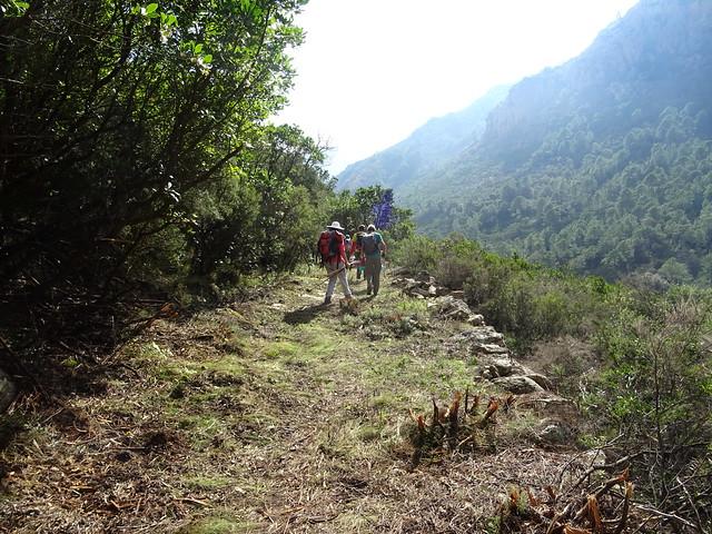Chemin de Paliri au retour : au niveau des beaux soutènements
