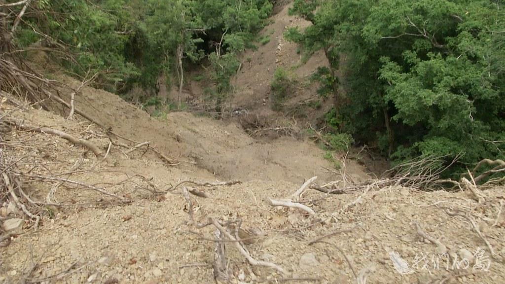 975-2- (2)整片森林的樹都砍掉,甚至將近快85度角的山坡。