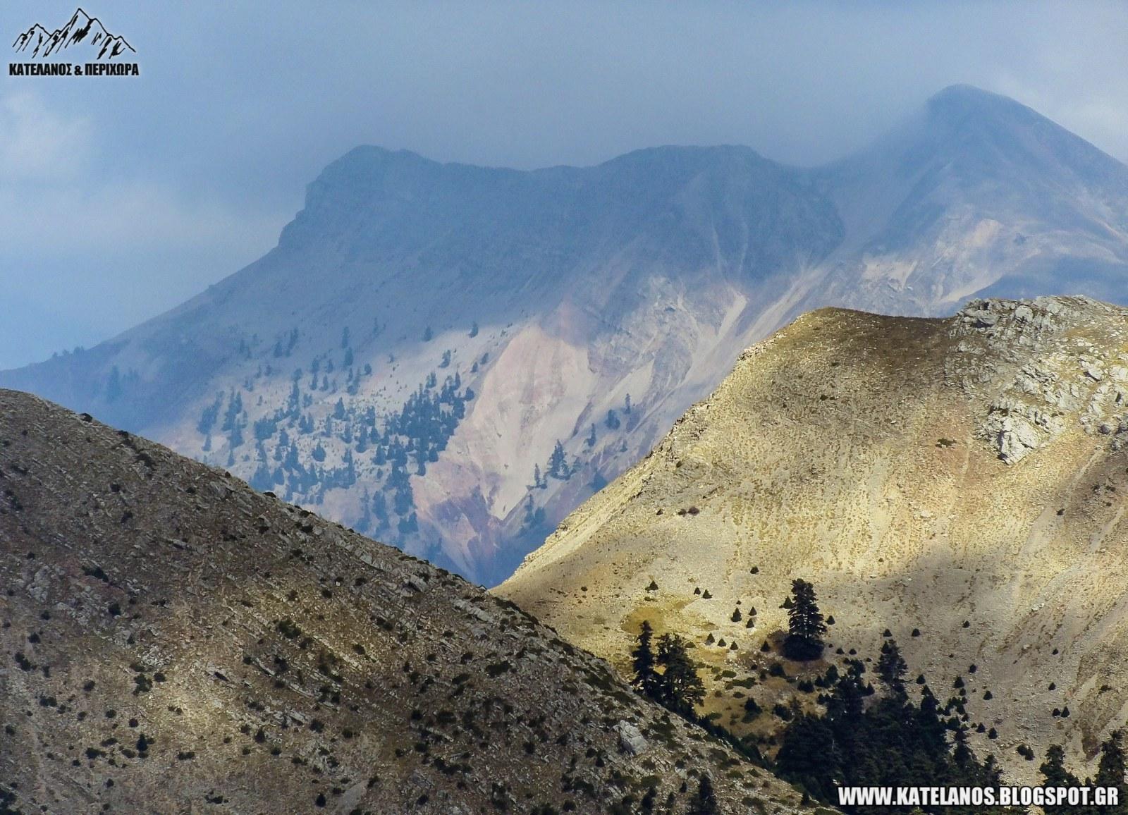 χελιδόνα ευρυτανίας βουνό