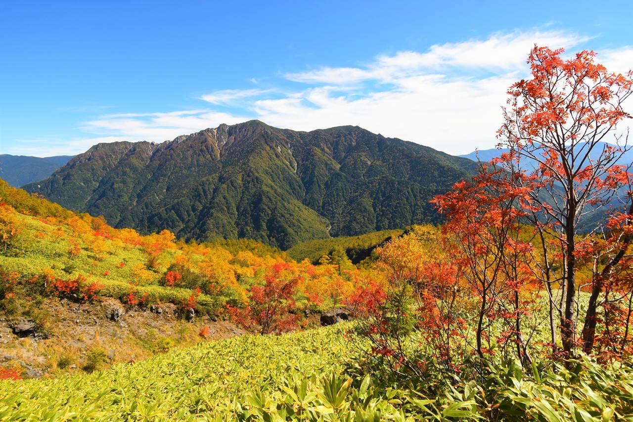 紅葉と霞沢岳