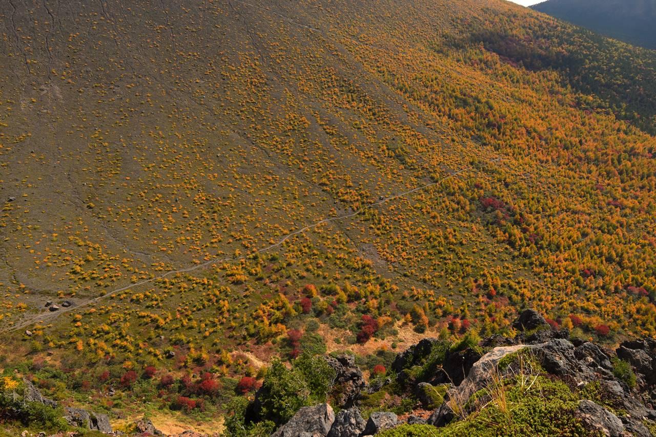 浅間山・賽の河原の紅葉と登山道