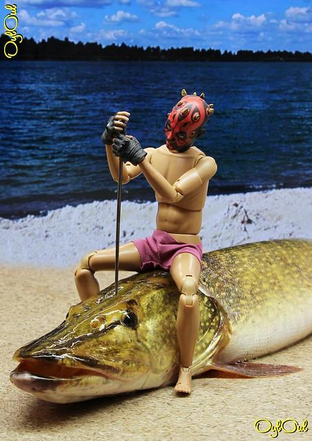 день рождения гиф картинки вот такая рыбина вас открыты