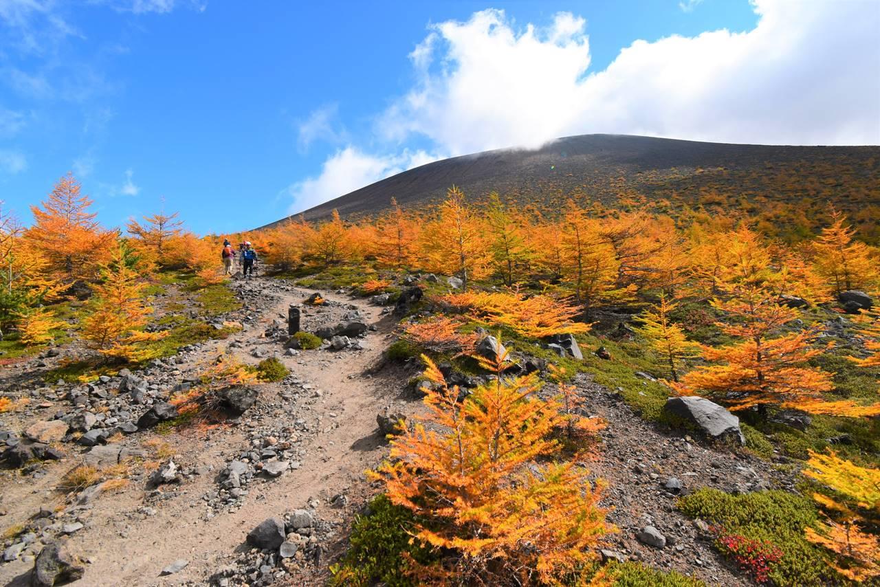 浅間山(前掛山)と落葉松の紅葉