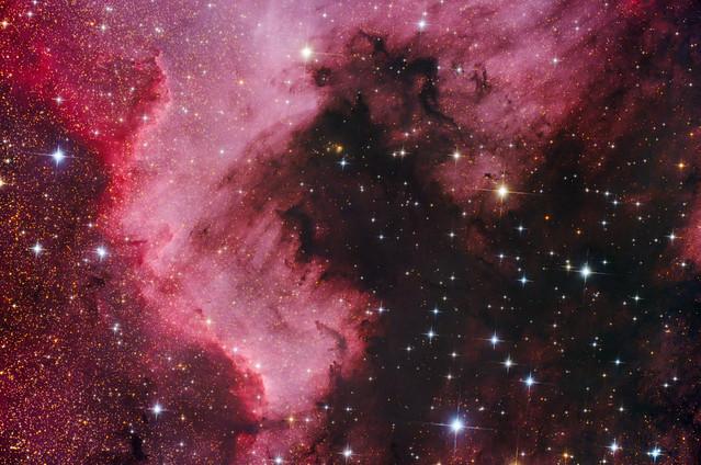 VCSE - NGC 7000, az Észak-Amerika-köd - Fábián Kálmán felvétele