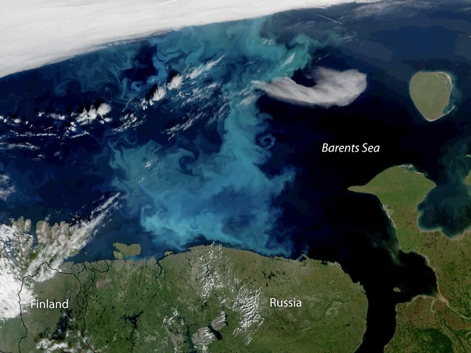 春季北極海洋浮游植物大量增生。這是美國NOAA衛星於2018年7月30日拍下的全彩影像。圖片來源:NOAA