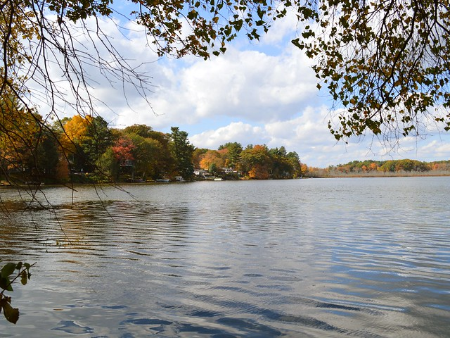 View of October Trees over Lake