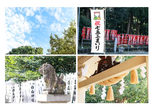 白山神社(岐阜県多治見市)