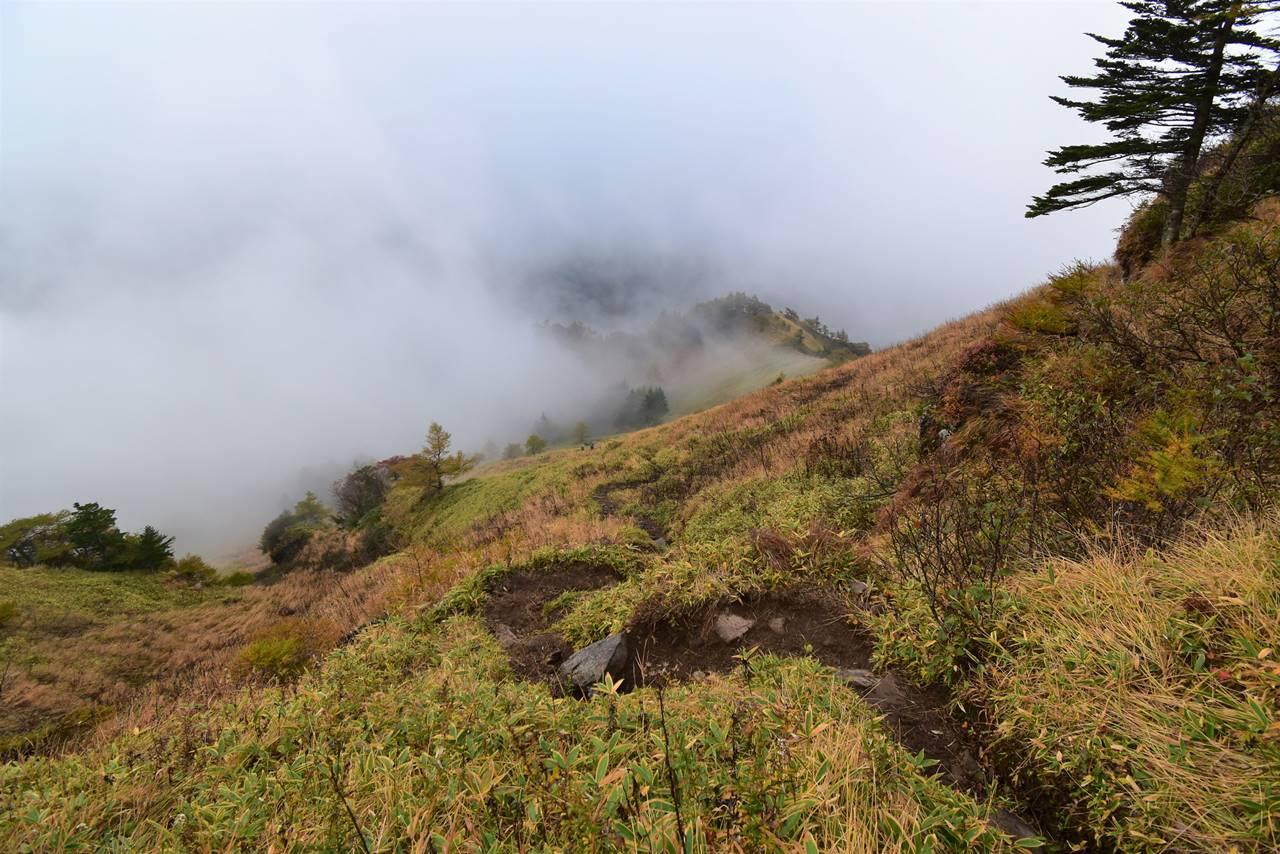 浅間山 草すべりの下り坂