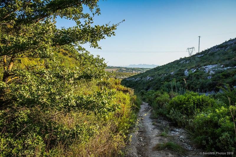 Montserrat desde el Barranc de les Fontanilles
