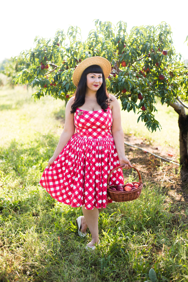 red and white checked vintage dress