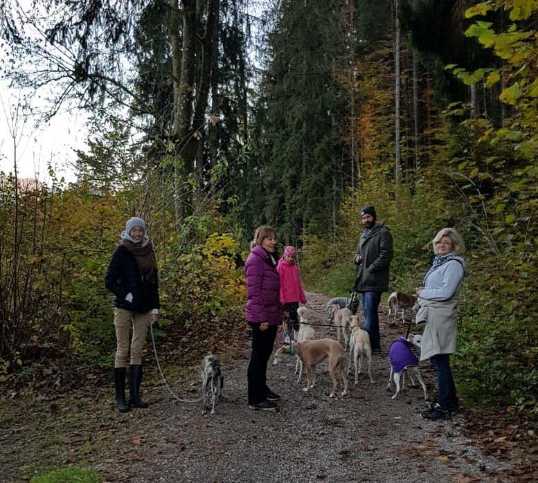 Kleiner Spaziergang nach dem Treffen mit Hanna, Nahla, Marco und ihrer Nuka und Waltraud mit Garnet und Tardis