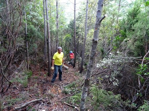 Travaux de restauration du tronçon abandonné du Chemin de Paliri