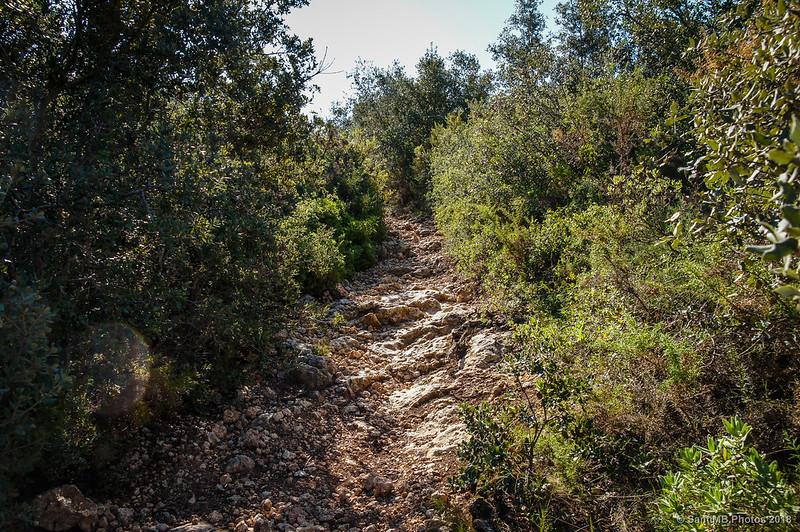 Subiendo al Castell d'Olèrdola desde el Fondo de la Vall